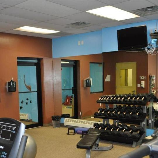 Fitness Center at Brownstone Lane II in NYC - Condos for sale