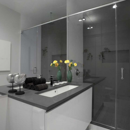 315 Gates Avenue- Bathroom with Glass Shower- condo for sale NYC