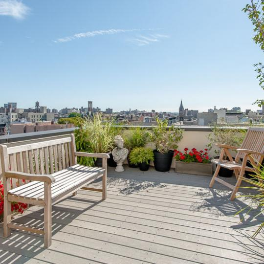 Apartments for sale at 50 West 127th Street in Manhattan - Terrace