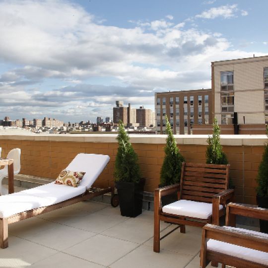 Ellington on the Park - 130 Bradhurst Avenue - NYC Luxury Apartments - Rooftop