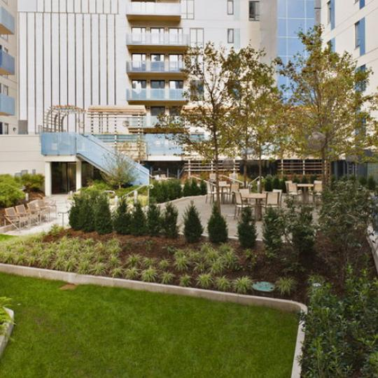 Griffin Court New Construction Building Garden – NYC Condos