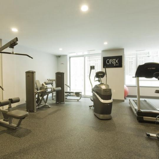 The Onyx Fitness Center - Chelsea NYC Condominiums