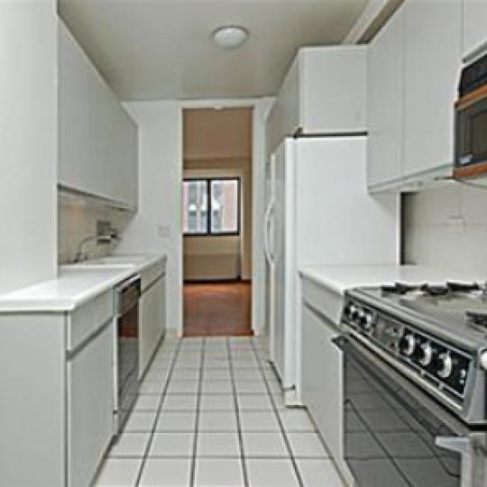 Morgan Court Kitchen - 211 Madison Avenue Condos for Sale
