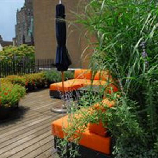 Landmark 17 Roof Deck - Condominiums for Sale NYC
