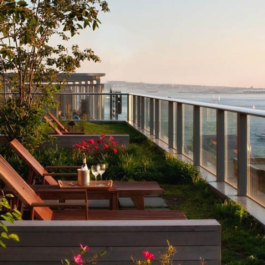 The Visionaire Condominiums - Roof Garden