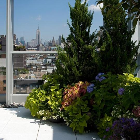 350 West Broadway New Construction Building Terrace – NYC Condos