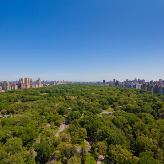 The Intercontinental View - Manhattan Condominiums for Sale