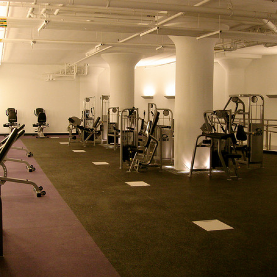 Arris Lofts Gym - LIC condos for sale