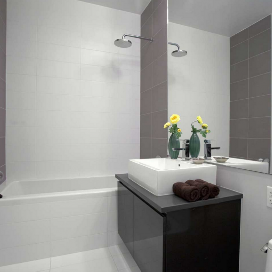 Bathroom with Bathtub- 315 Gates Avenue- apartment for sale NYC