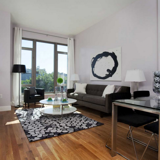 Living Room- 315 Gates Avenue- condo for sale NYC