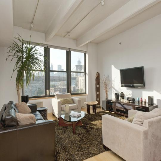 Dumbo Condominiums for Sale - Livingroom