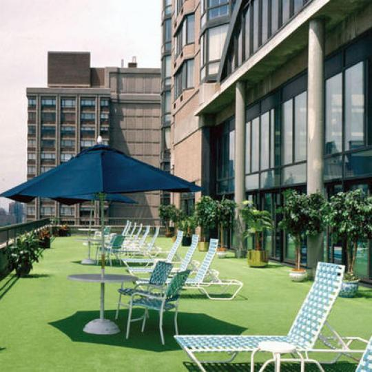Bristol Plaza - Manhattan Apartments for sale - roof