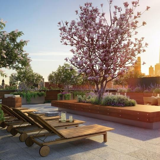 Rooftop Terrace at 438 East 12th Street in Manhattan