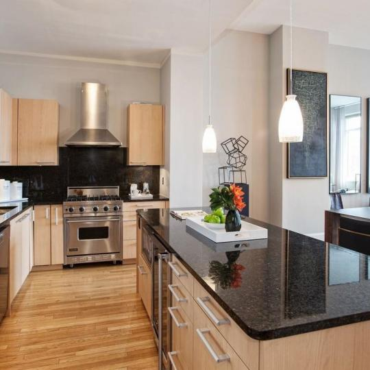 Open Kitchen at The Lion's Head Condominium in NYC