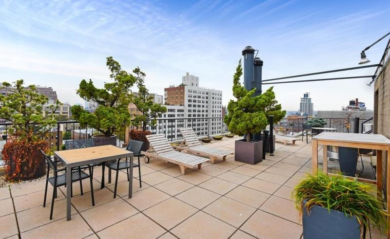 Rooftop Deck at The Cheyney in NYC - Apartments for rent