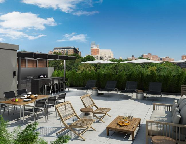 88 Morningside Avenue Roof Deck Terrace – NYC Condos for Sale